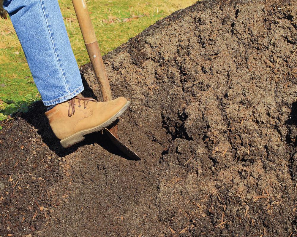 digging in backyard